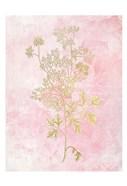 Botanical Pink 3