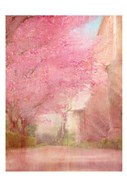 Pink Pathway