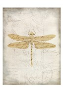 Dragonfly Letters 3