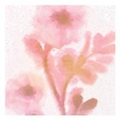 Soft Light Pink 1