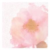 Soft Light Pink 2