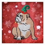 Merry Bulldog