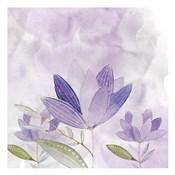 Purple Delight 2