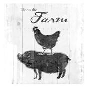 Farm To Chicken Pig Grey