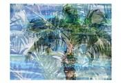 Deep Palm 1
