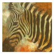 Global Zebra