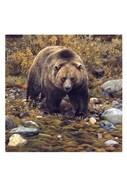 Trailblazer - Grizzly Bear (detail)