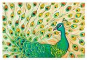 Pretty Pretty Peacock