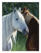 Horse Whispering