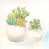 Sweet Succulent Pots I