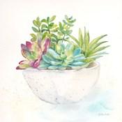 Sweet Succulent Pots II