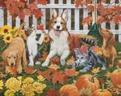 Puppies and Kittens - Autumn