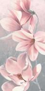 Sunrise Blossom II