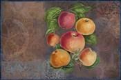 Apples - Fruit Series