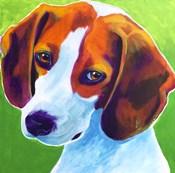 Beagle - Watson