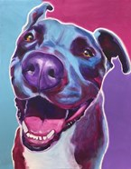 Pit Bull - Candy
