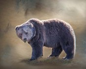 Grizzly Bear Boar