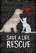 Save a Life - Rescue