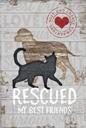 Rescued My Best Friend