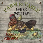 Farm to Table - Poultry