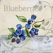 Tutti Fruiti Blueberries
