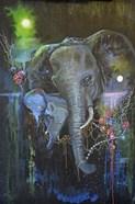 Elephant Bond