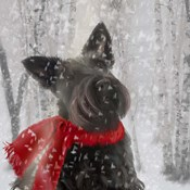 Scotty Dog Red Scarf
