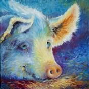 Baby Blues Piggy