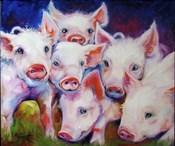 Half Dozen Piglets