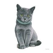 Cutie Kitties VI