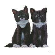 Cutie Kitties IV