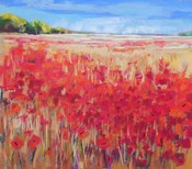 Corn and Poppies IV