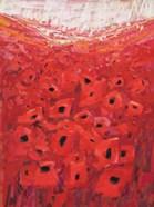 Spanish Poppies II