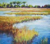 Early Fall Marsh