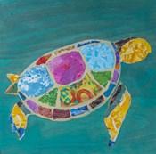 Sea Turtle Right