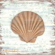 Ocean Scallop
