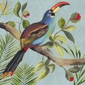 Paradise Toucan I