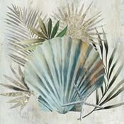 Turquoise Shell I