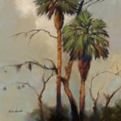 Stricktly Palms 1