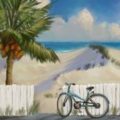 Beach Dunes1