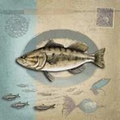 Freshwater Fishing 3