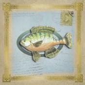 Freshwater Fishing 5