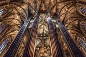 Barcelona Cathedral 2
