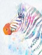 Fluorescent Zebra I