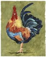 Chicken Scratch IV