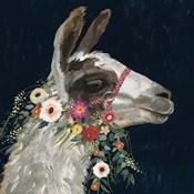 Lovely Llama I