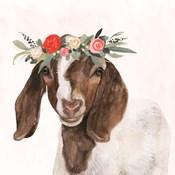 Garden Goat II