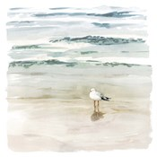 Seagull Cove II