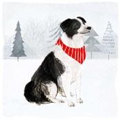 Christmas Cats & Dogs II