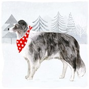 Christmas Cats & Dogs IV